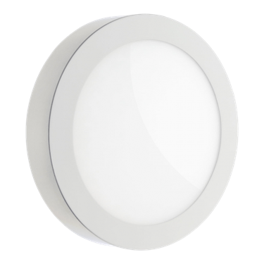 Picture of PLAFONIERA DA INTERNO LED - ALGINE ROTONDA ECO - WW/NW/CW