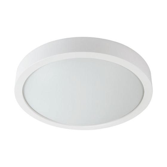 Picture of PLAFONIERA DA INTERNO - OLIE LED - WM - WW