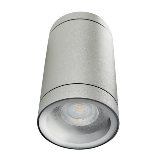 Picture of BART DL - 160  - IP54 -APPLIQUE A SOFFITTO PER ILLUMINAZIONE DA ESTERNO